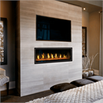 LV50N-2 Napoleon Direct Vent Fireplace with Remote Control and Bluetooth Flame Control included